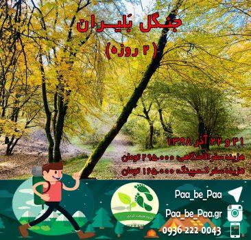 جنگل بَلیران